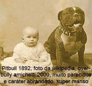 bully 1892